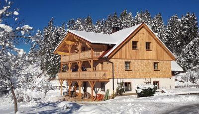Winter at Goeschlhof in Mariazell